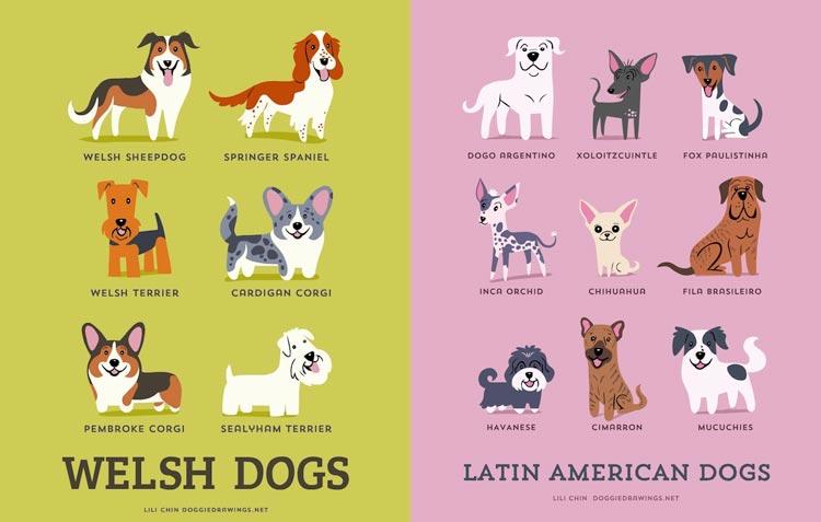 'Atlas psov' – 192 pasem na prikupnih ilustracijah