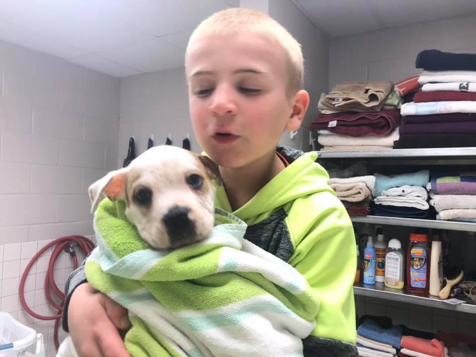 7-letnik, ki je rešil več kot 1300 psov