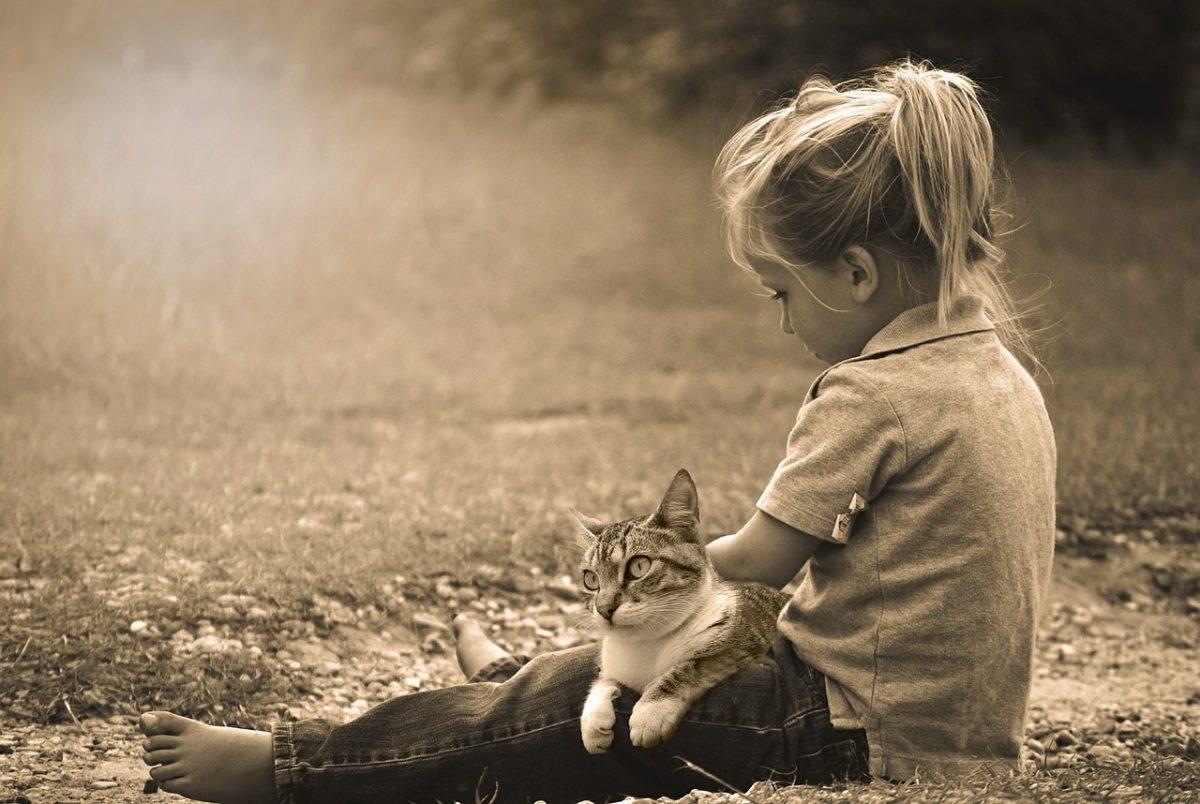 Mačke in otroci