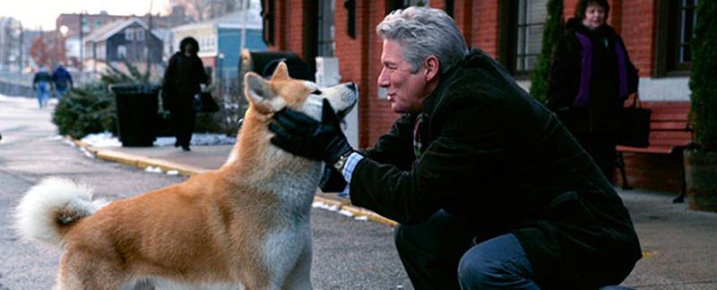 Top 8 filmov tega tisočletja – s psom v glavni vlogi