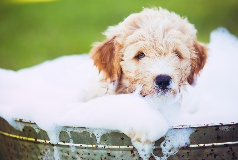 Kako premagati strah pred umivanjem?