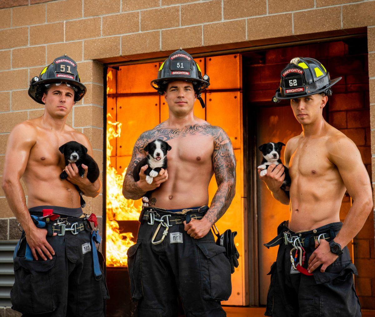 Koledar, poln lepih gasilcev in srčkanih mladičkov