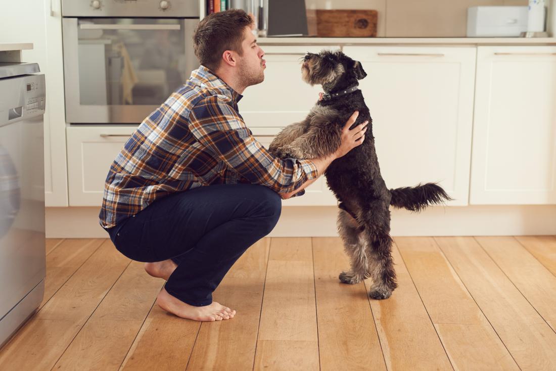 Odrasli psi ne marajo ''ogovarjanja po otroško''
