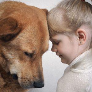 pasja empatija