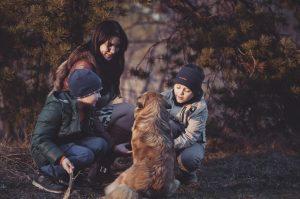 6 pravil, da bo otrok varen in pes srečen