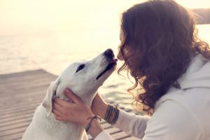 Pasje ljubosumje je tudi znanstveno dokazano