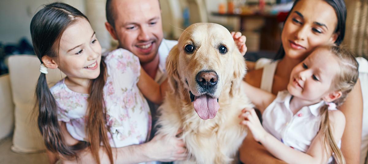Koga v družini ima kuža najbolj rad?