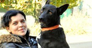 Psička prehodila več kot 300 kilometrov, da je našla svojo rešiteljico