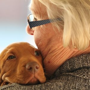 Woman Dog Puppy Hug Vizsla Love Old Young Cute