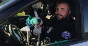 'Tačke na patrulji' prav zares s policisti v ameriški Nebraski