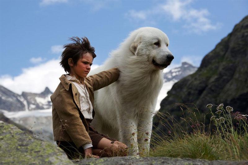 10 čudovitih pasjih filmov