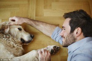 Pes – naše ogledalo?