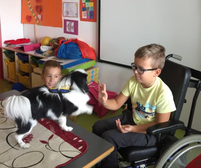 Štirinožec Kimi bere z otroki v URI Soča
