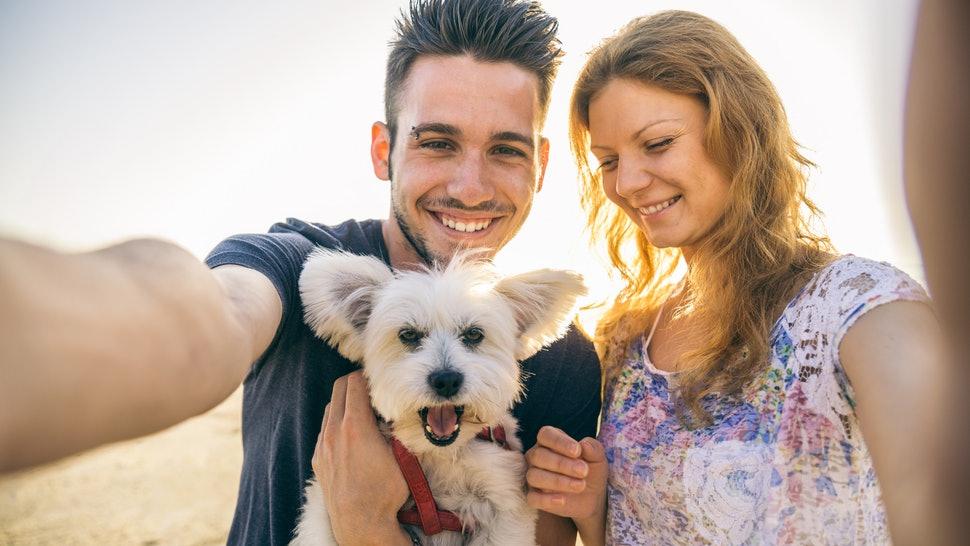Lastniki psov srečnejši od lastnikov mačk