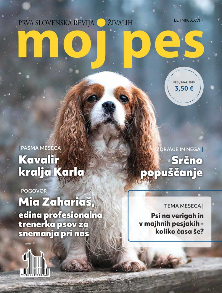Tiskana številka: februar/marec 2019