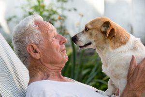 Pasji skrbniki živijo dlje