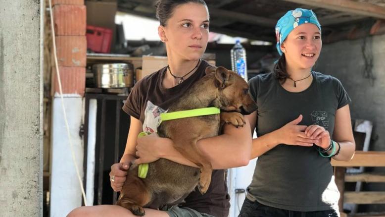 Mlade slovenske veterinarke na pomoč živalim v Palestini
