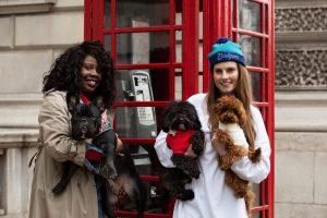 V Londonu se ta teden dogaja prvi 'Teden psov'