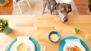 Človeška hrana, s katero lahko popestrite pasje obroke