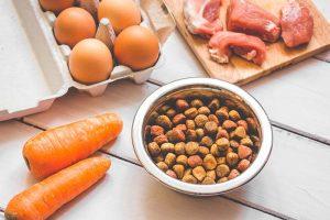 Liofizirana in dehidrirana hrana