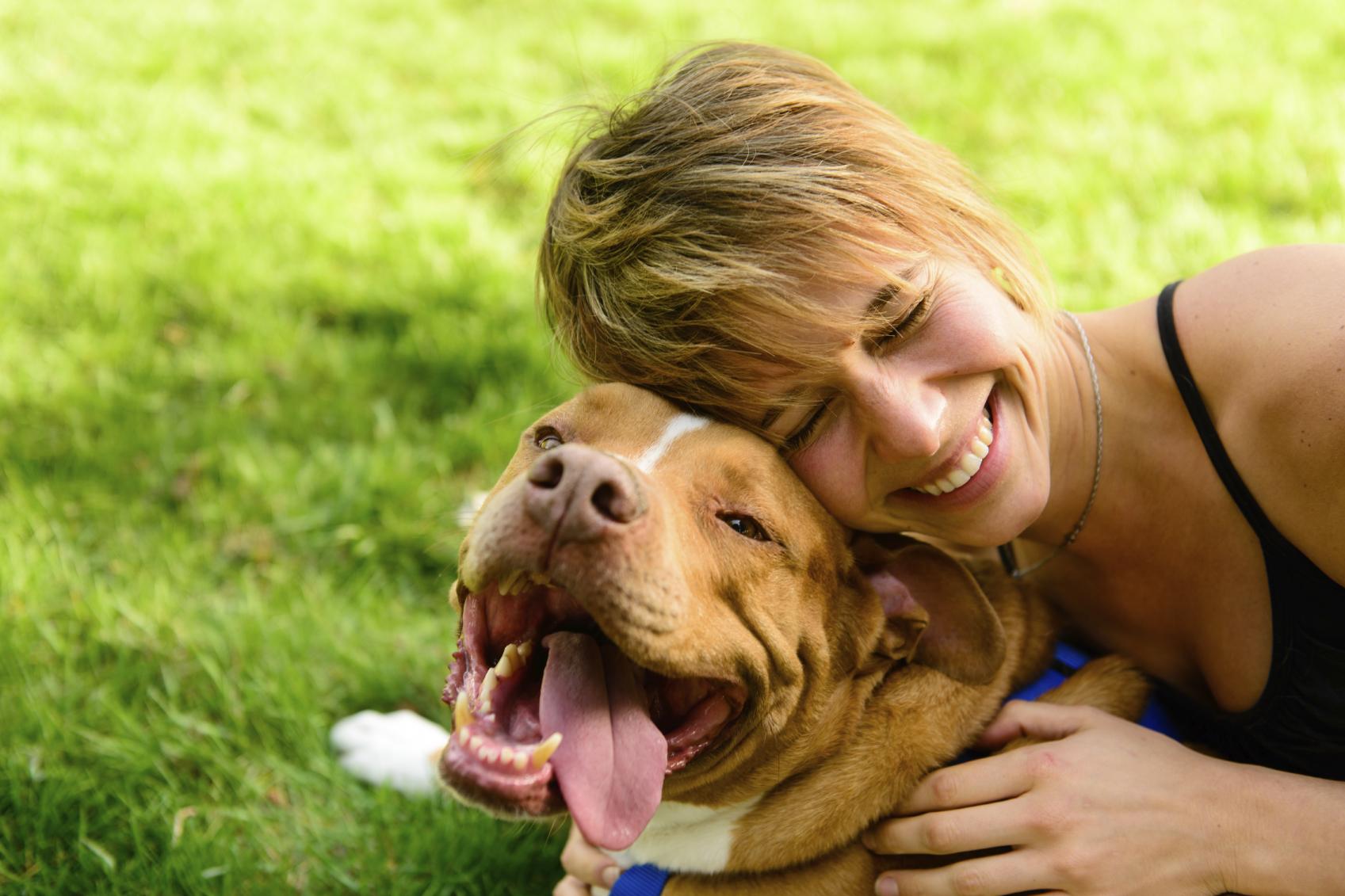 Psi in skrbniki so si podobni tudi po značaju