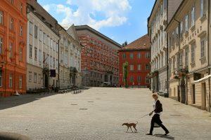 Na MOL so prepričani, da je v Ljubljani za pse dobro poskrbljeno