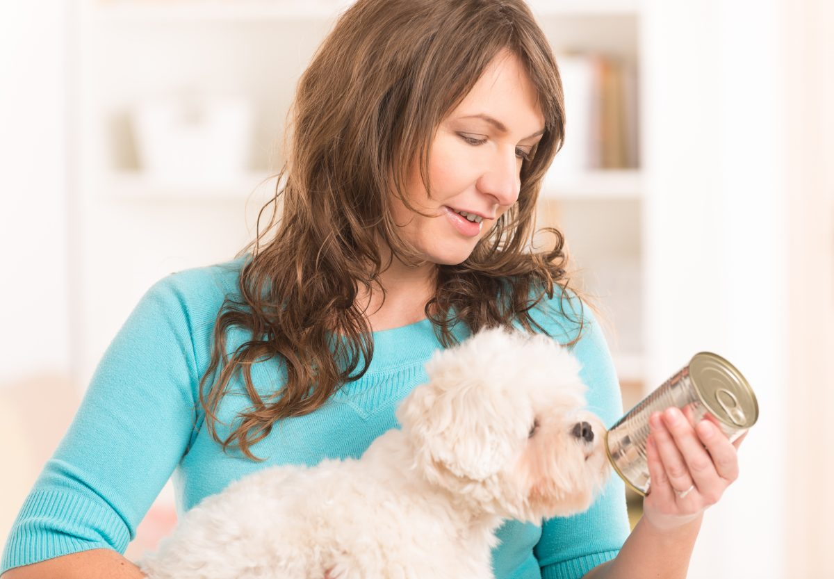 Kako hraniti psa 2: PLOČEVINKE