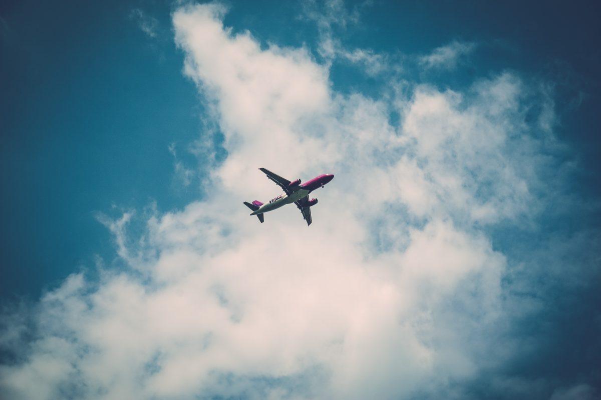 Odhajate s psom na letalo?
