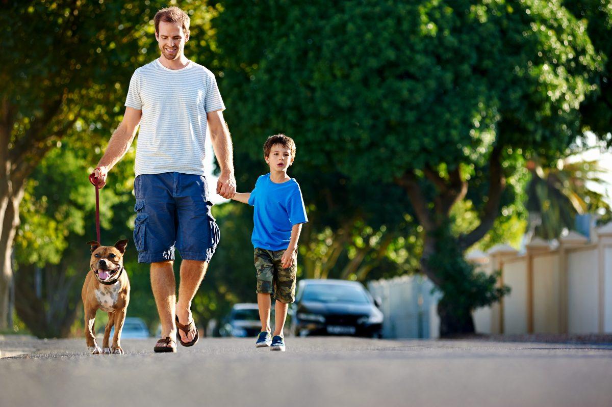 Lastniki psov se več rekreirajo, je zdaj dokazala tudi raziskava