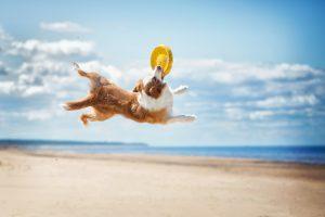 10 nasvetov za vroče poletne dni