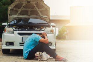 Znanstveniki potrdili, da se stres prenaša z lastnika na psa