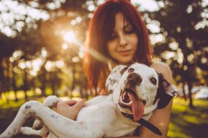 Danes je svetovni dan psov