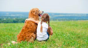 Otroka moramo naučiti osnovnih pravil v odnosu do psa