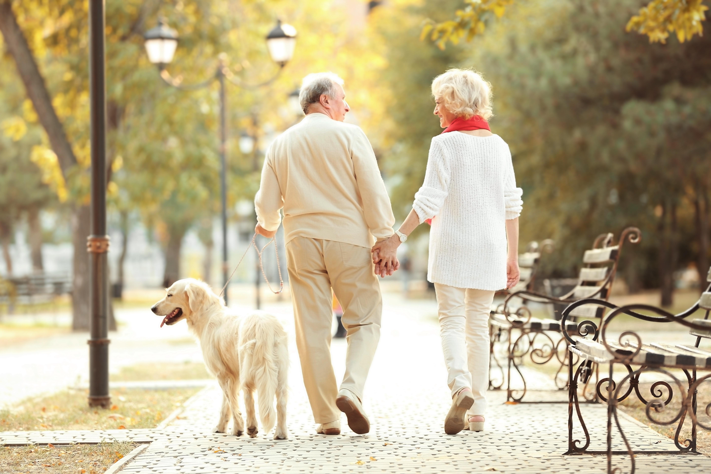 Lastniki psov imajo bolj zdravo srce