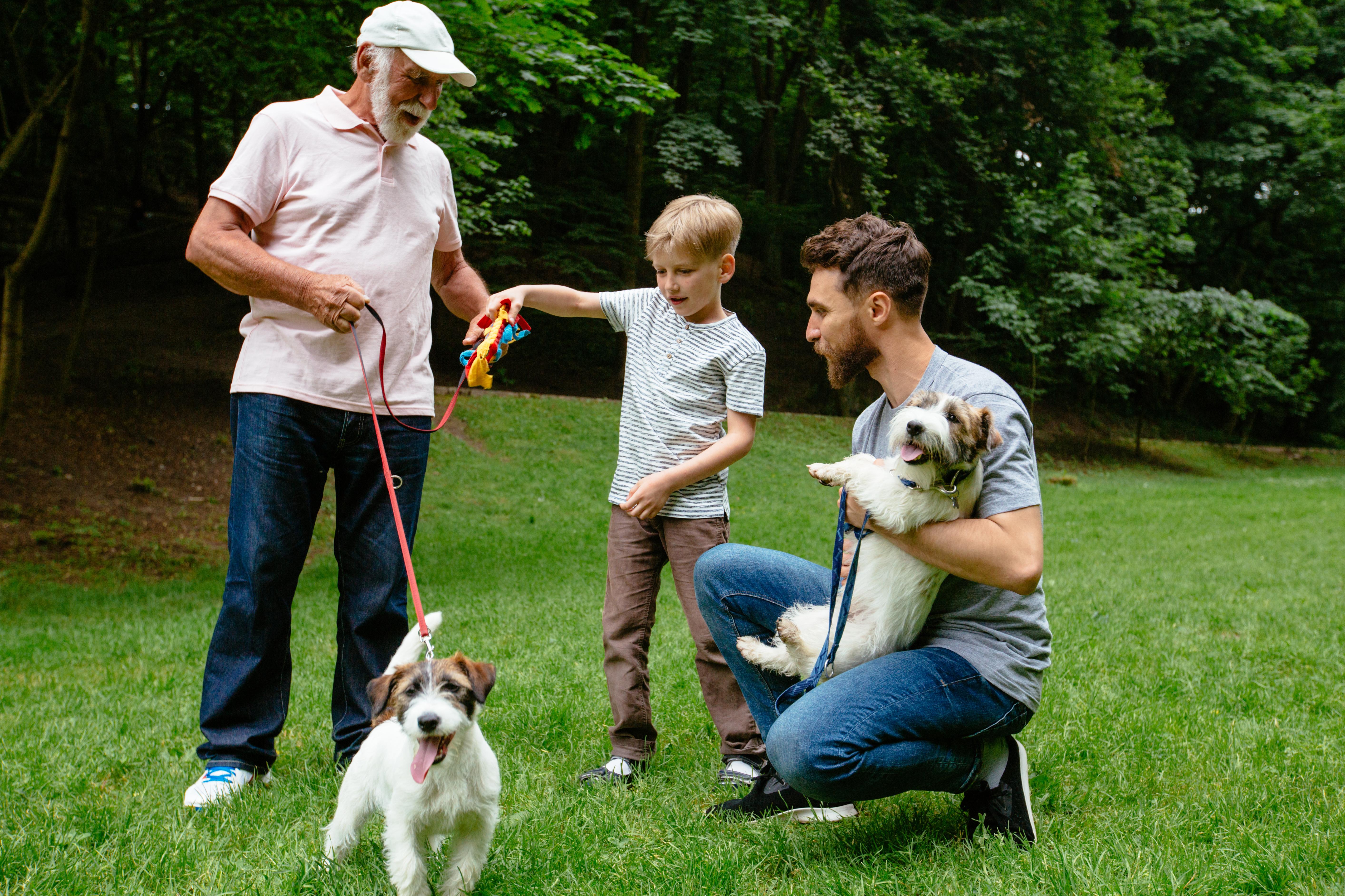 4 pravila za prijateljski odnos med otrokom in psom