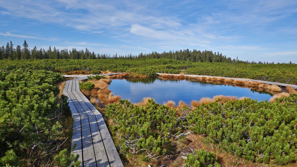Ideja za izlet: Lovrenška jezera