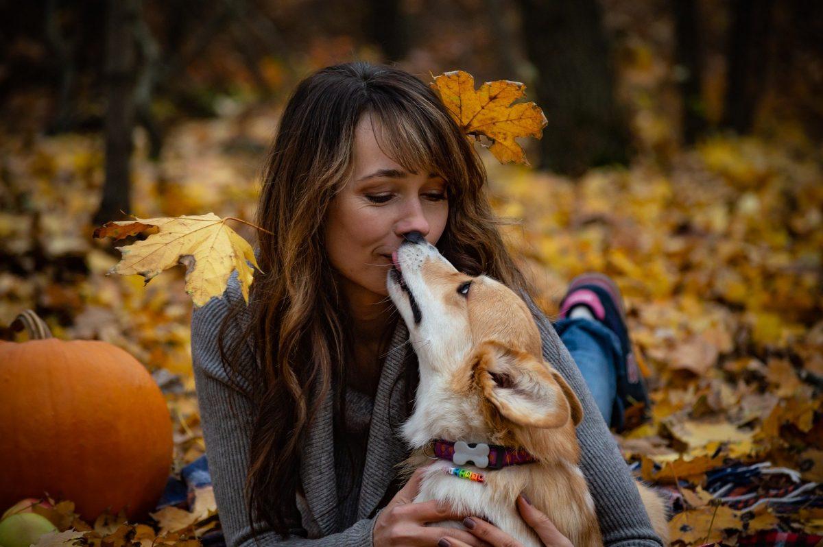 Je pasji poljub res izraz naklonjenosti?