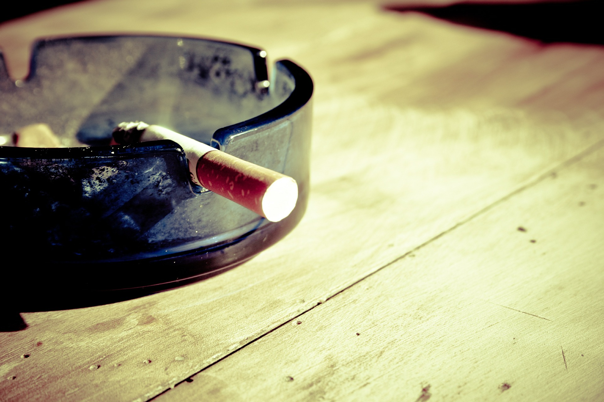 Cigaretni dim škoduje tudi hišnim ljubljenčkom
