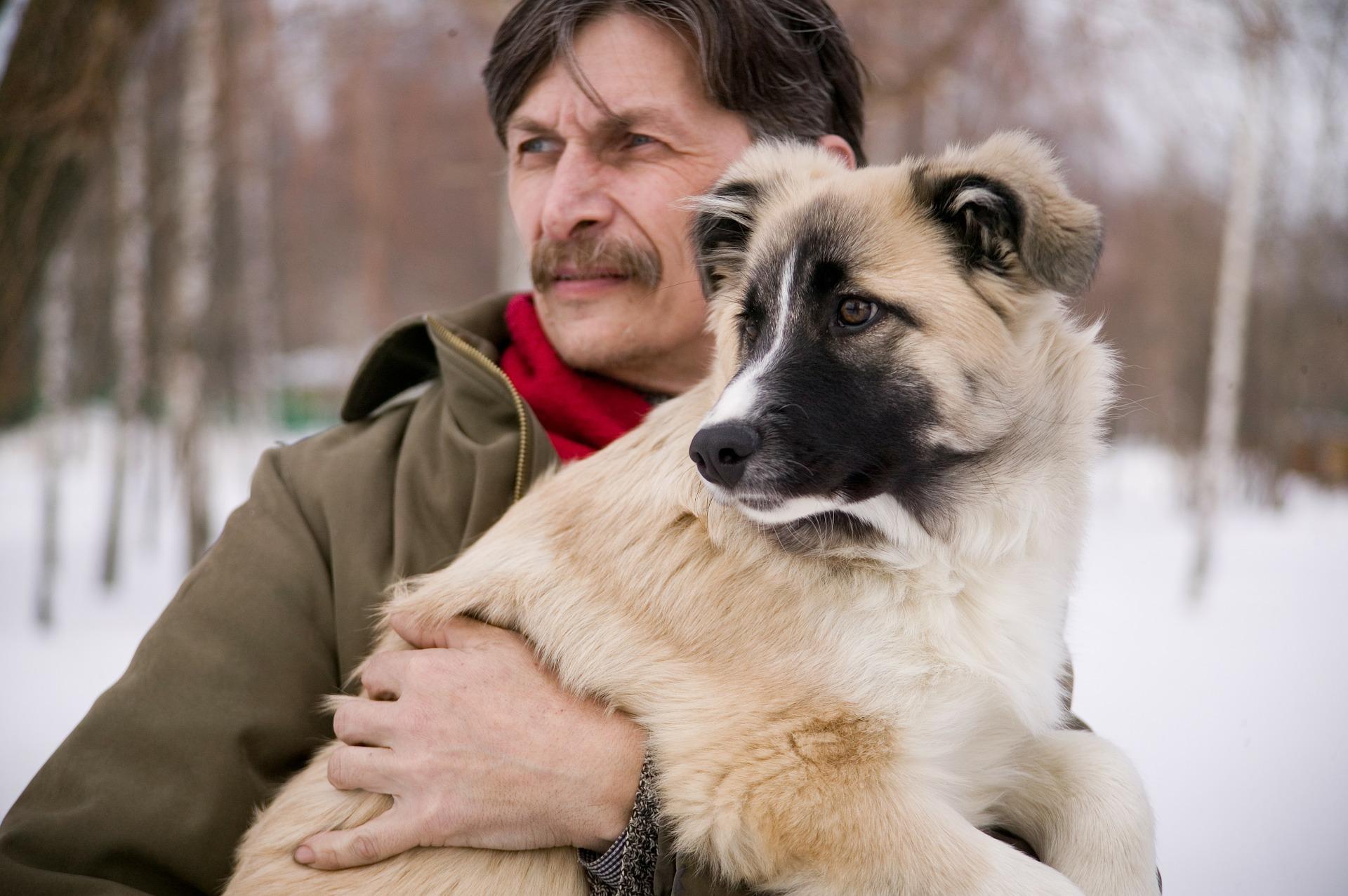 Pes je pri treh letih star enako kot 50-letni človek!