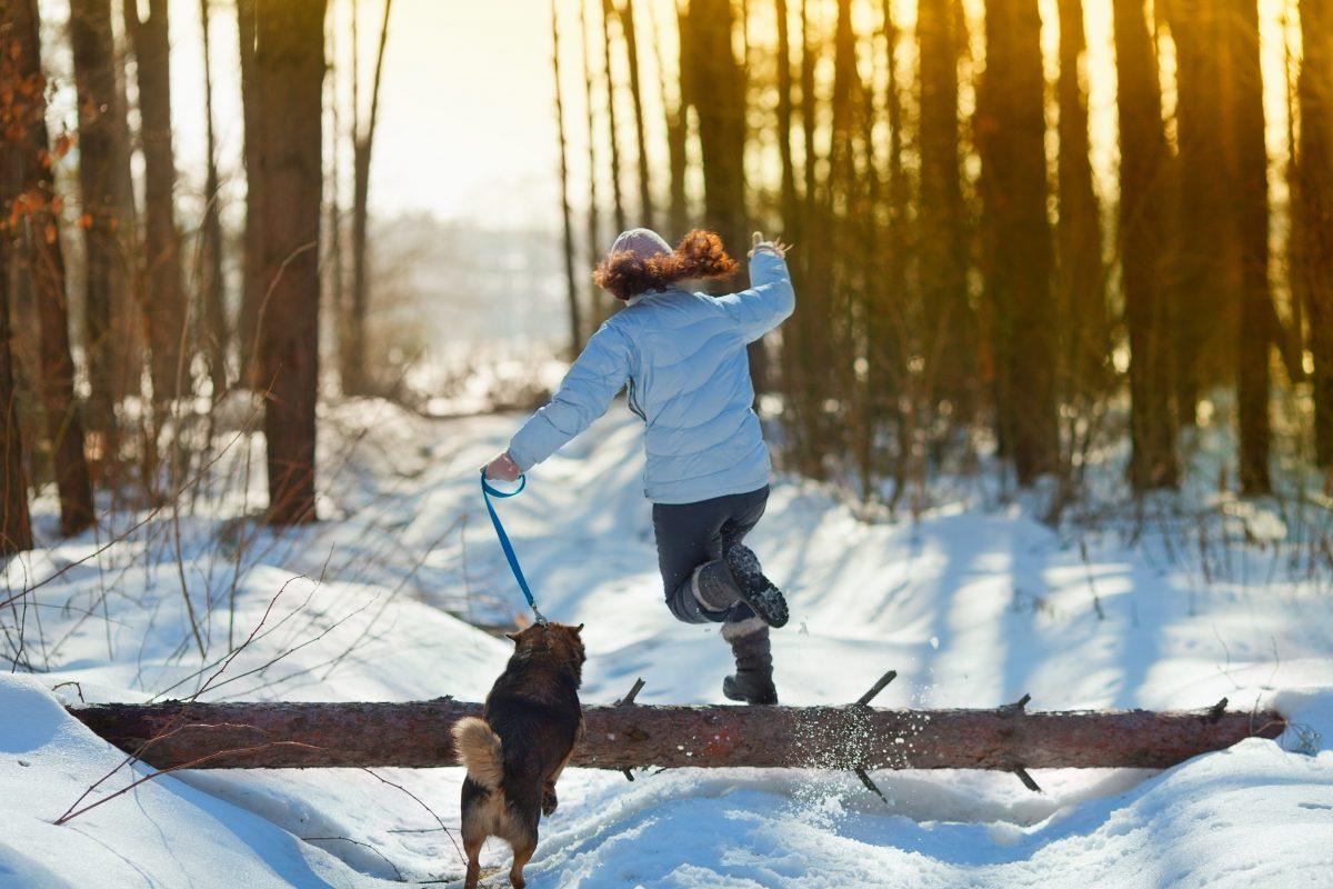 Aktivno s psom tudi pozimi