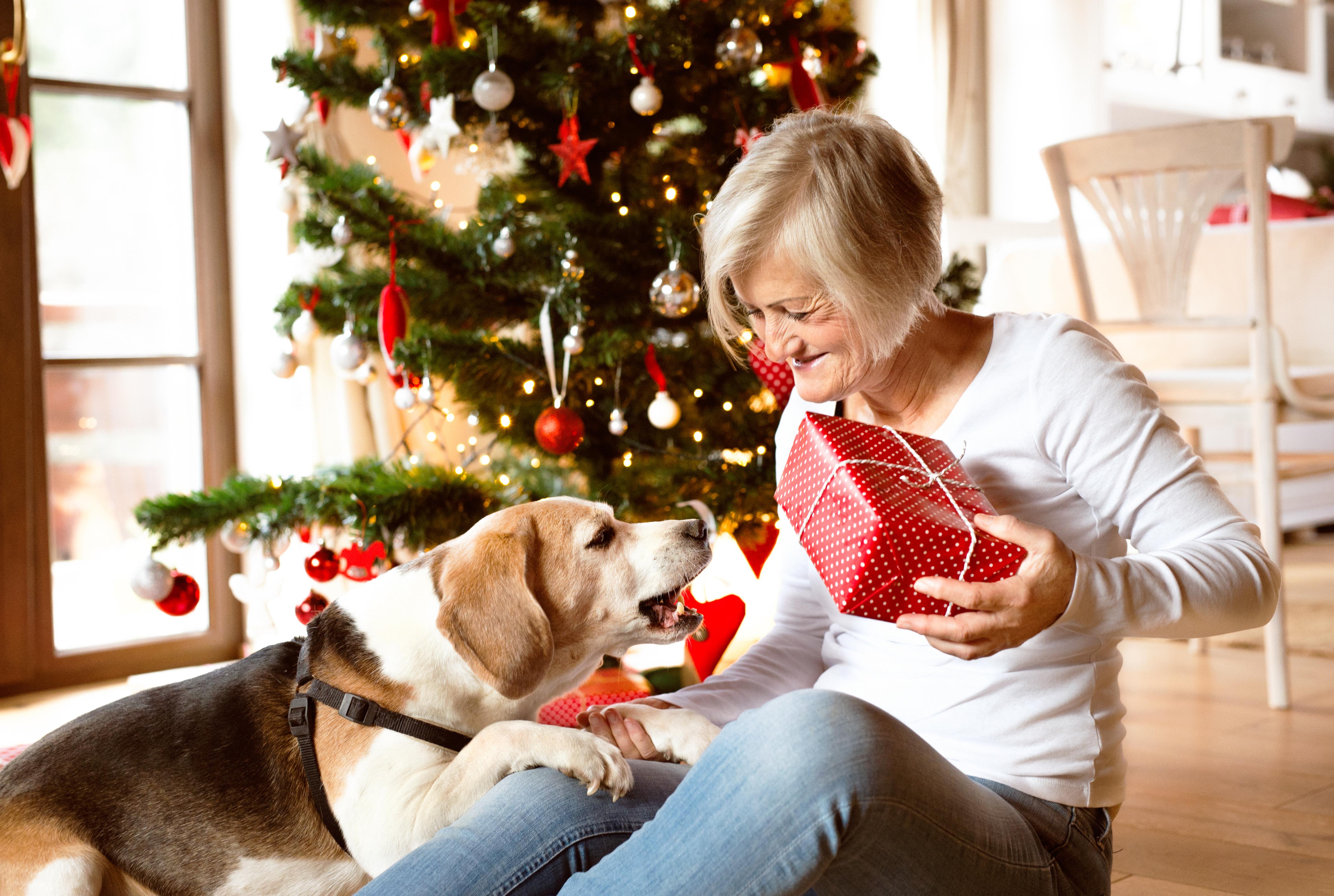 5 idej za darila, ki jih bodo veseli ljubitelji psov