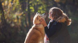Eno leto hranila psa na verigi, nato ga je odpeljala domov