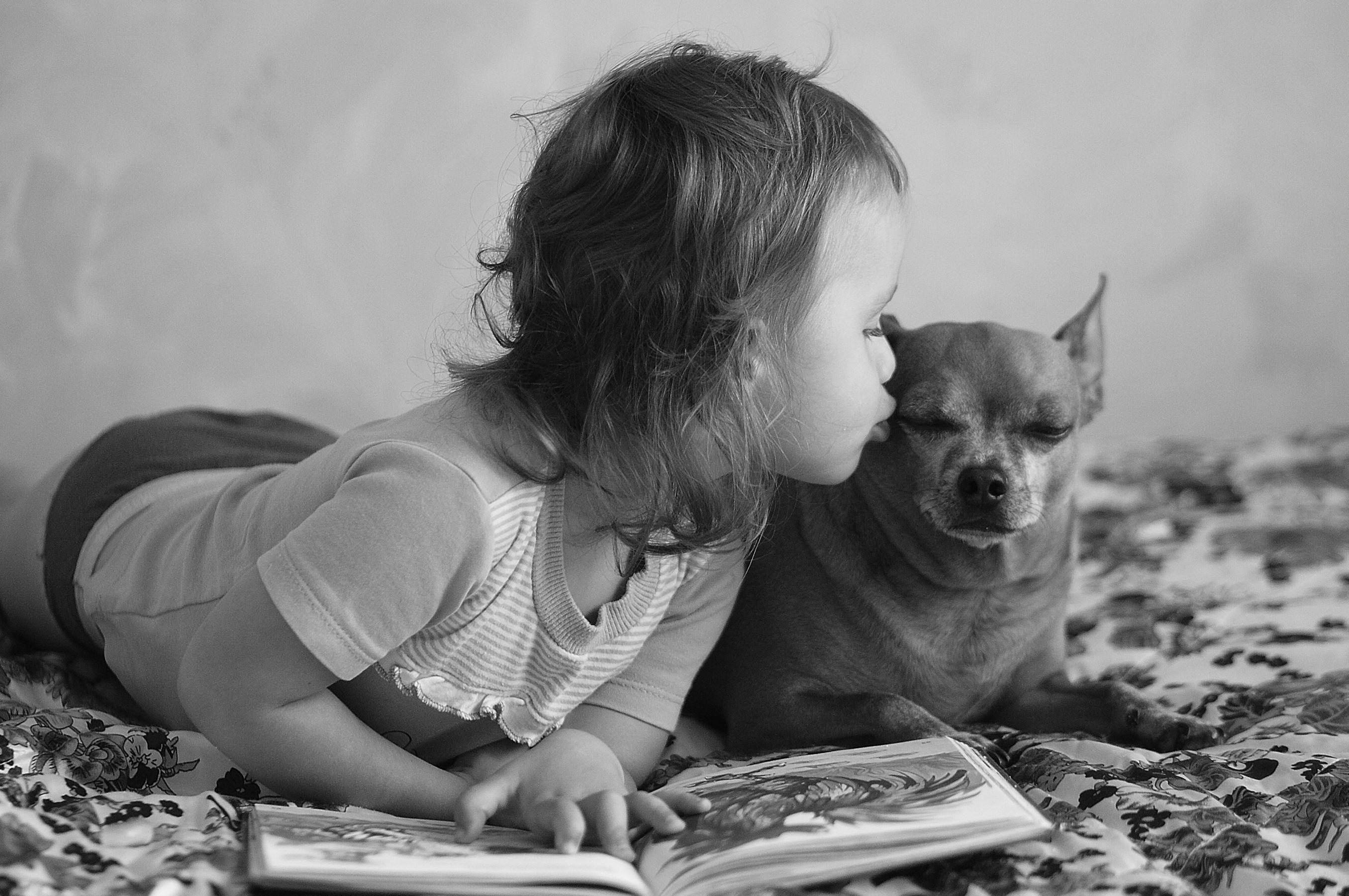 Deklica vsako sredo po šoli bere pravljice psom v zavetišču
