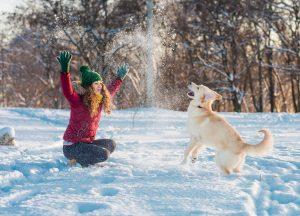 4 zabavne stvari, ki jih lahko počnete s psom v zimskih dneh