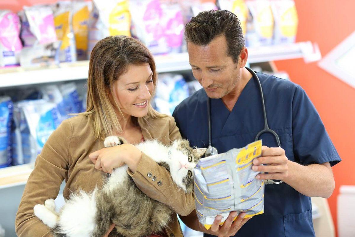 Pasja hrana pri veterinarjih: je res bolj kakovostna?