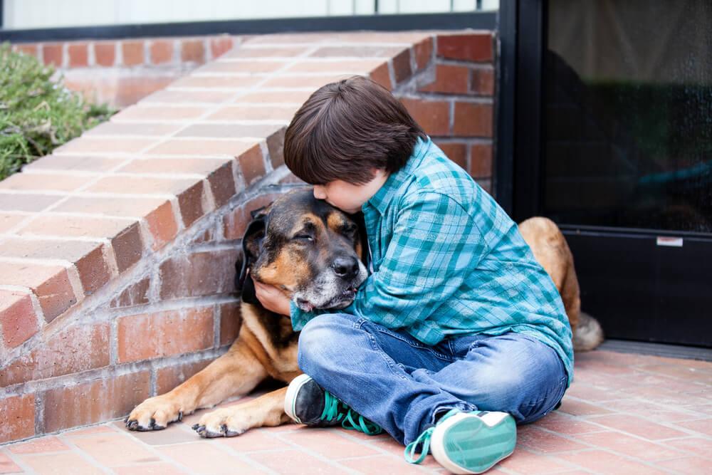 Posvojeni deček na misiji, da reši čimveč starih psov
