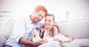 Raziskava: tretjina pasjih skrbnikov bi izbrala psa in ne partnerja