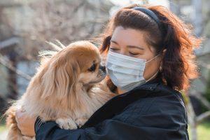 Nasveti mikrobiologinje glede domačih živali in koronavirusa