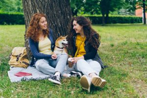 Pasji skrbniki bolj odgovorni, mačji pa bolj kreativni