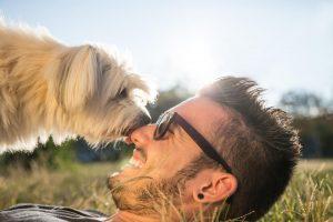 Pasji skrbniki se zabavajo drugače kot mačji